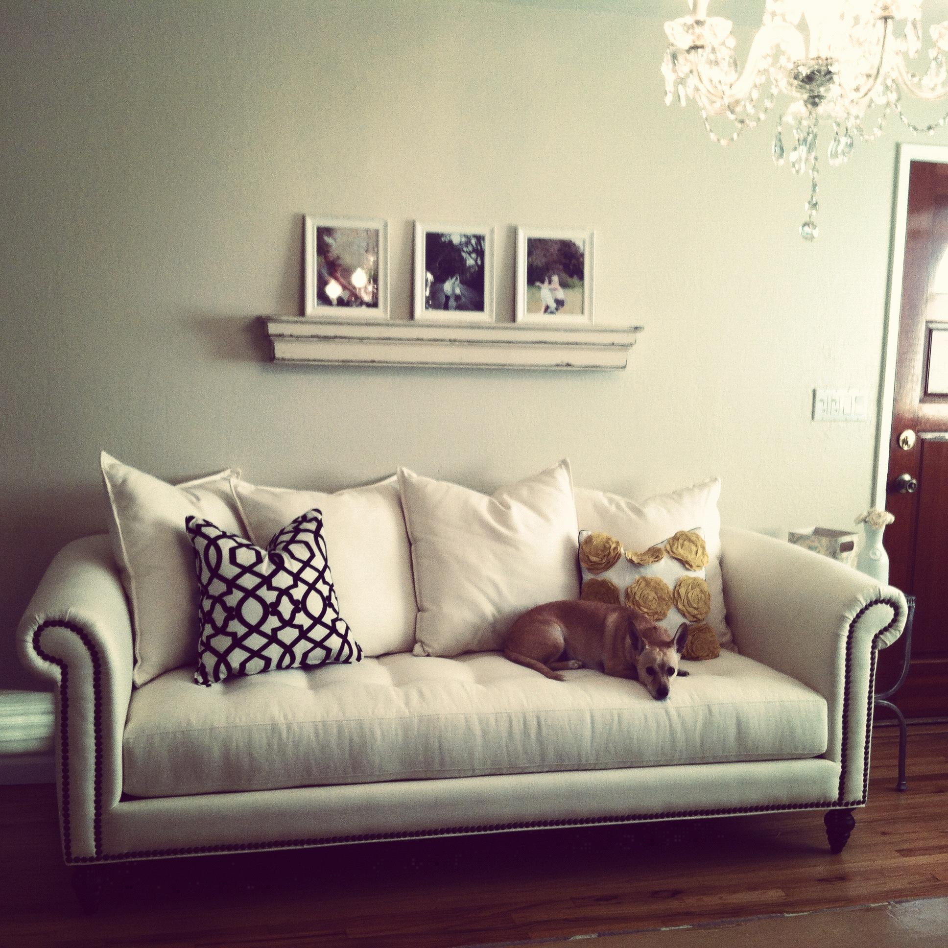 pottery barn rug | House To Home Blog